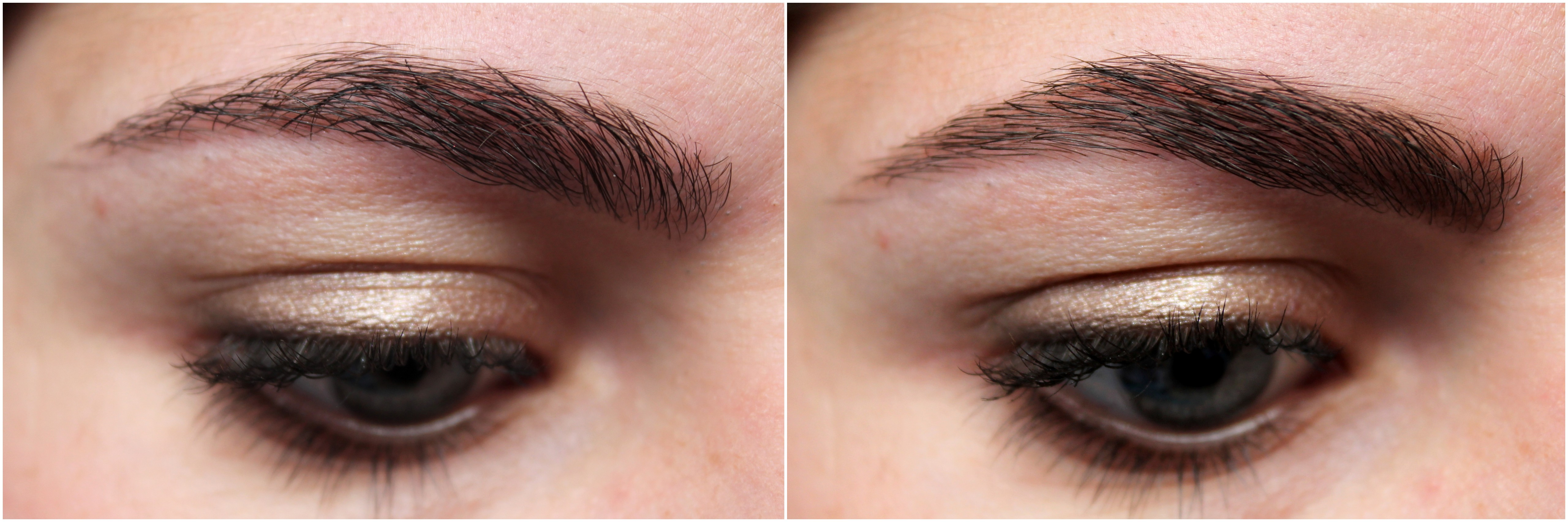 Review Catrice Eyebrow Set Make Up Your Mind